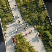 Beauty of High Line Park From New York