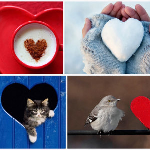 Valentine's Day: Heart, Hearts Everywhere….