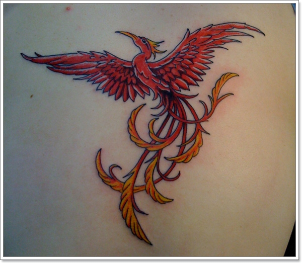 Gentlemen This Time Your Phoenix Tattoo Designs.. (37)