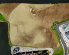 Artist Creates 11-Acre Beautiful Portrait Named Wish in Belfast Field
