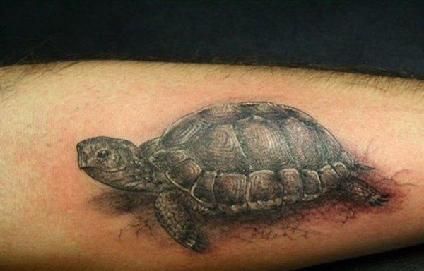 Lucky Turtle Tattoos For Boys And Girls (17)