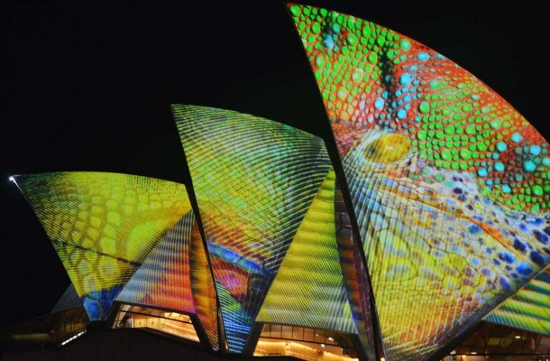 Have a Look At Light Festival in Sydney (9)
