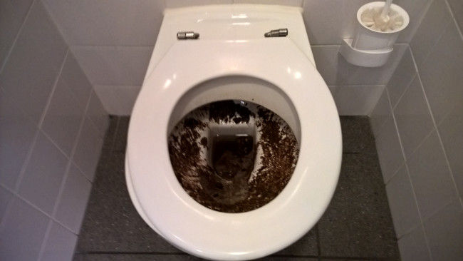 I wanted to take a quick dump before exams. I'll just hold it up a little..