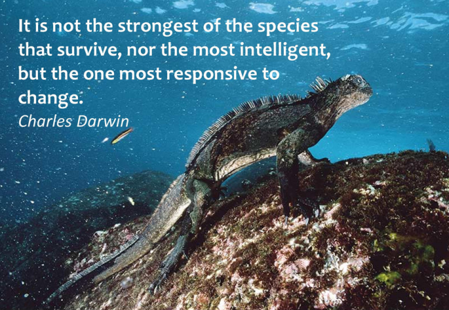 It is not the strongest of the species that survive, nor the most intelligent, but the one most responsive to change