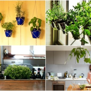13 simple and effective ideas for creating a green garden at home