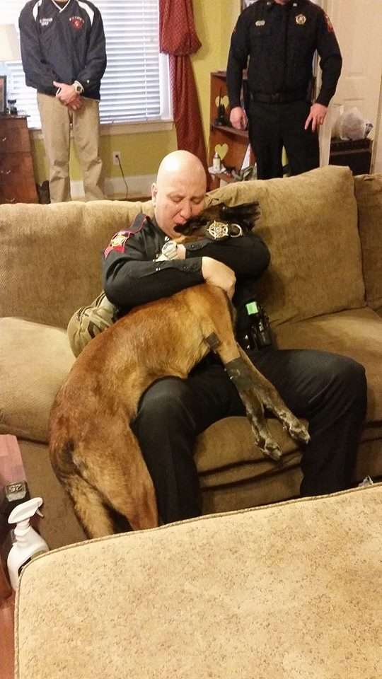 My town's police K-9 died this morning. This is his caretaker partner saying goodbye one last time.