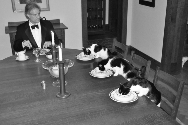 "When my wife leaves town, I get bored. Six days into her vacation I joked ""I'm going to have a formal dinner with the cats."" Then I thought about it for a while.."