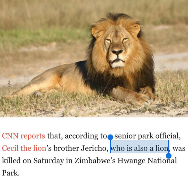 Cecil the Lion's brother...