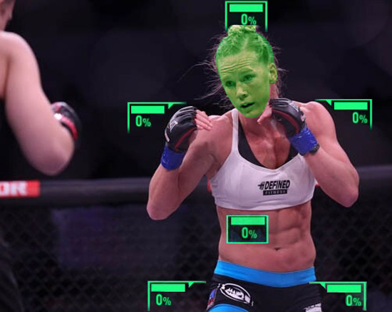 Ronda Rousey's view during UFC 193