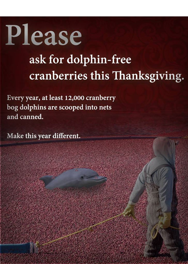 Think of the dolphins!