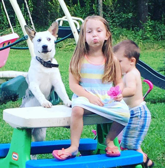 My sister in law took this pic of her dog and kids...the dogs face says it all