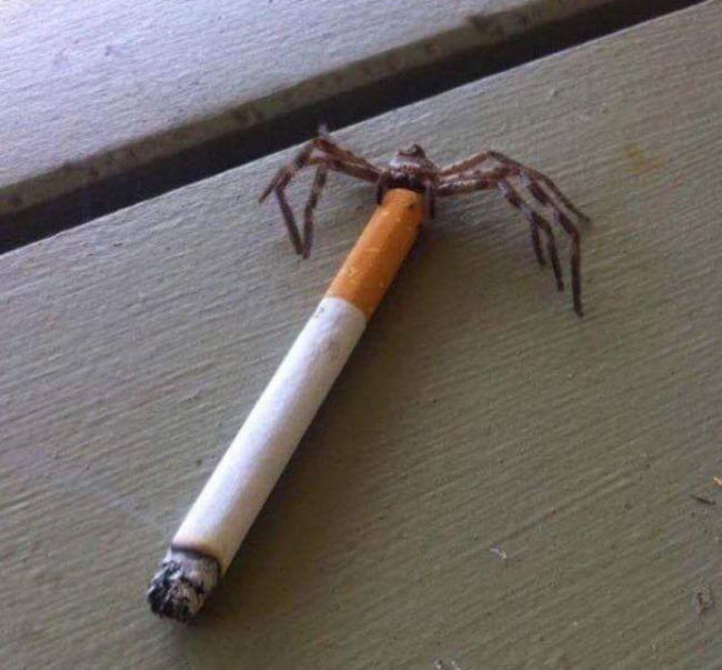Charlotte? Haven't heard that name in years...