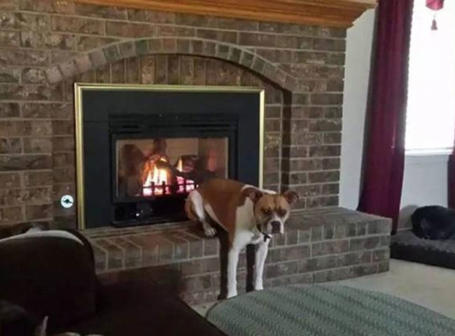 Just warming up my butt