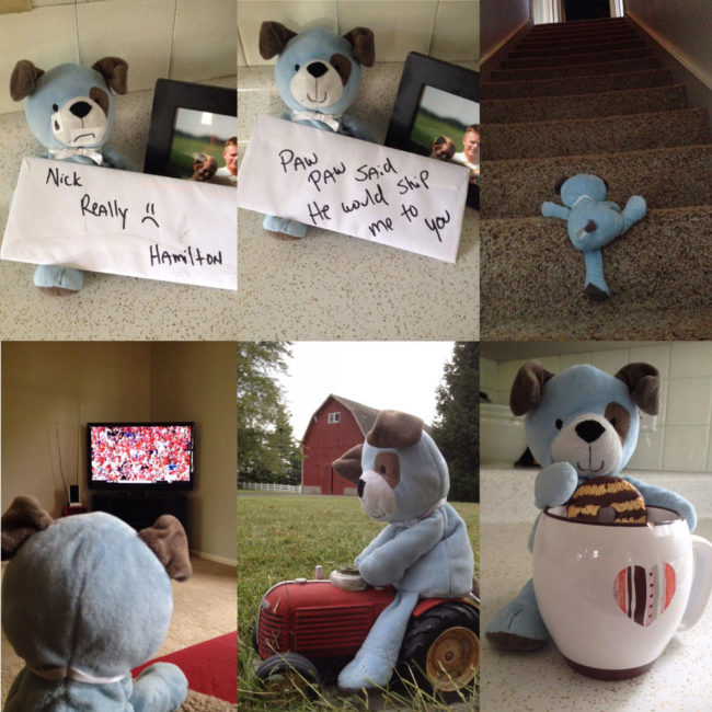 My son accidentally left his favorite stuffed animal, Hamilton, on my dad's farm. My dad had a little fun making a story out of it