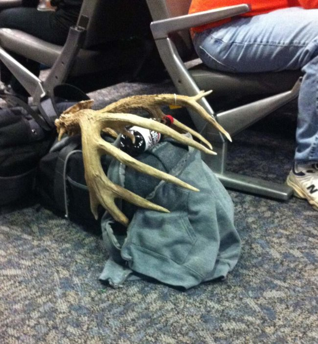 This guy's carry-on is somehow OK, but my nail clippers are deemed highly dangerous
