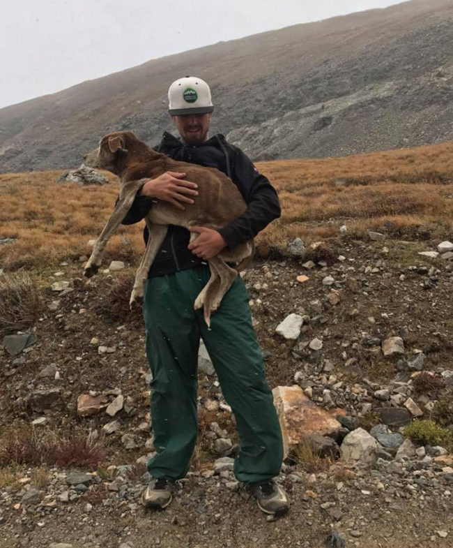 My friend read reports about a stranded dog on Mt. Bross in Colorado and proceeded to climb the mountain and rescue said dog