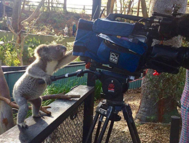 Is he even koalalified to operate that camera
