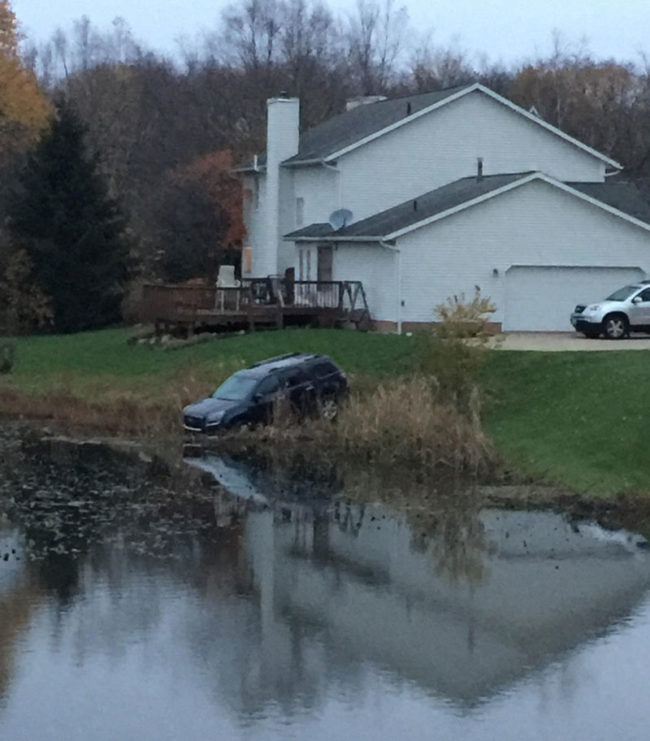We're truly witnessing something rare, as the wild SUV takes a drink out of the pond. It has traveled many miles to quench its thirst