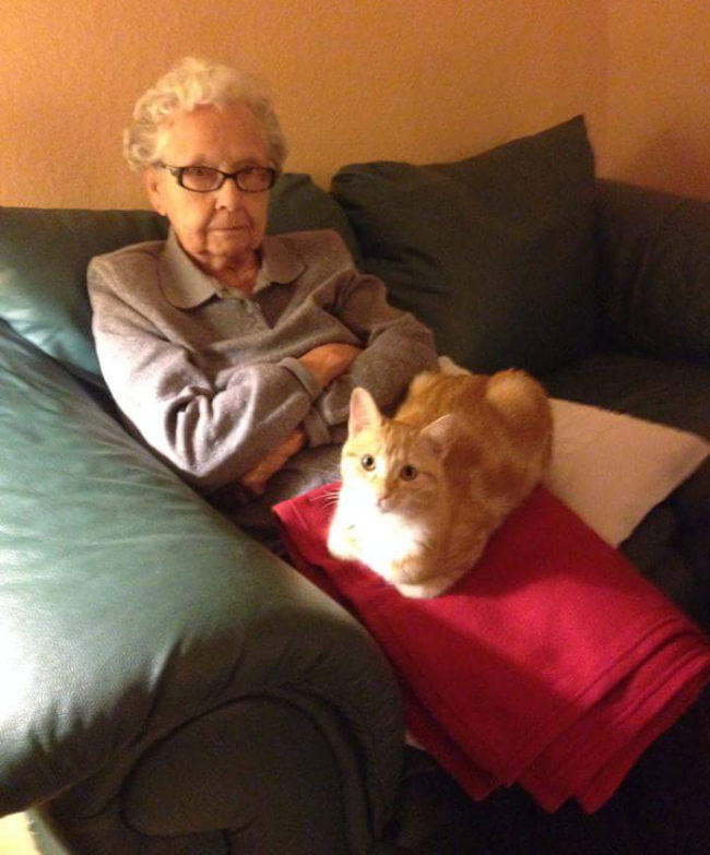 My cat loves my great grandma. The feeling isn't mutual