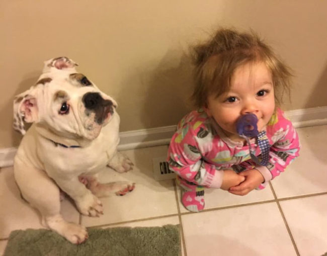 My daughter and my puppy fight over who's going to warm their butt on the vent in the morning. The baby won today. The puppy is pouting about it