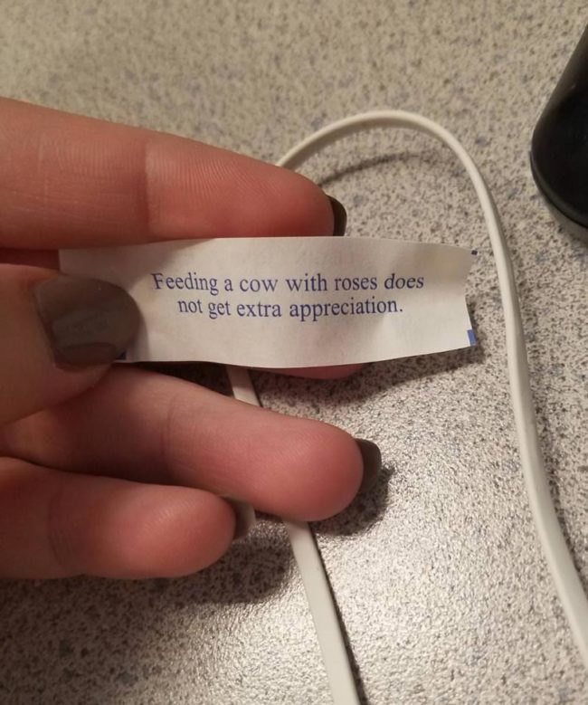 I tossed a fortune cookie in my wife's lunch today. She angrily sent me this picture. Like I control the fortunes inside the cookies and I picked this one on purpose