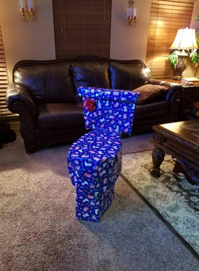 Every year I try to disguise my sister's Christmas present. This year I think I went a little too far...