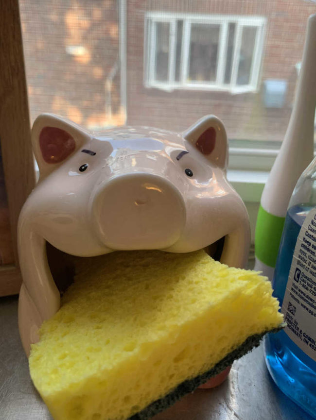 It's been 1 week since I added angry eyes to our sponge holder. Seeing how long it takes the wife to notice