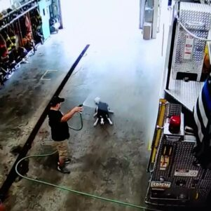 Dog's Graceful Entrance To The Fire Department Truck Room