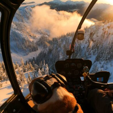 Awesome Backcountry Helicopter Cruise